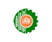 Utkal Grameen Bank Jobs
