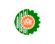 Utkal Grameen Bank Jobs