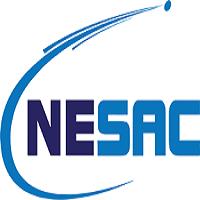 Jobs in Nesac Company