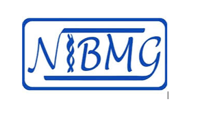 Jobs in Nibmg Company
