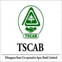 Staff Assistant Jobs in Tscab